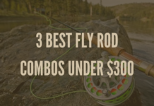 Show that this article is about the best fly rod combos for under $300.