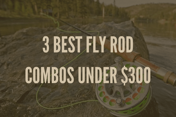 3 BEST FLY ROD COMBOS UNDER $300