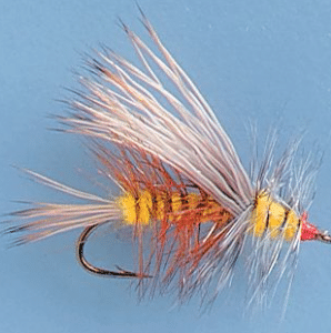 This is the third best ranked fly fishing fly.