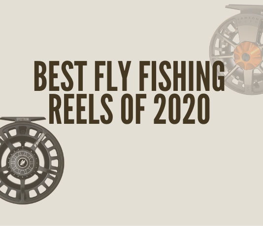 Shows what the best fly fishing reels of 2020 are.
